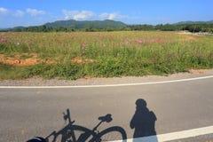 Ruelle de vélo Photo stock