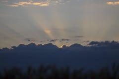 Ruelle fonctionnant par Autumn Deciduous Forest At Dawn ou le Sun photos stock