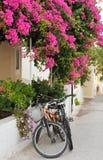 Ruelle grecque de village d'île photographie stock libre de droits