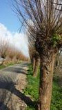 Ruelle néerlandaise près de Reeuwijk au sud de la Hollande Photographie stock libre de droits