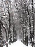 Ruelle Snow-covered dans la ville photos libres de droits