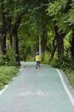 Ruelle verte de vélo en parc Photos libres de droits