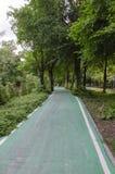 Ruelle verte de vélo en parc Image stock