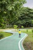 Ruelle verte de vélo en parc Photo stock