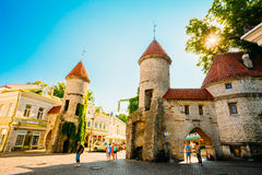 Rues et capital estonien de vieille architecture de ville, Tallinn, est Image libre de droits