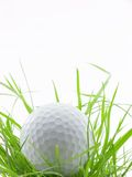 In the ruff. Golf ball in tall grass or ruff, isolated on white Royalty Free Stock Photography