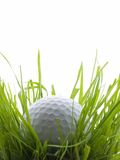 In the ruff. Golf ball in tall grass or ruff, isolated on white Stock Image