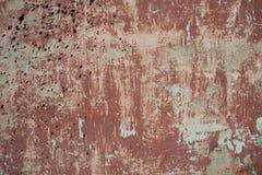 Ruffa mot den texturerade röda gamla cementväggen för bakgrund med Royaltyfri Foto