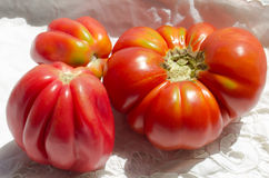 Ruffled heirloom tomatoes Royalty Free Stock Image
