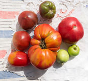 Ruffled heirloom tomatoes. Organic vegetables Royalty Free Stock Photos