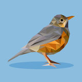 Rufous-bellied thrush in polygon style. Isolated illustration can be used in printing: card, t-shirt, phone case, mug, bag and so on Stock Image