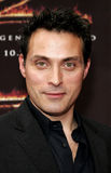 Rufus Sewell Royalty Free Stock Photos