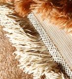 Rug. Macro shot of oriental rug. Handmade. Iranian Royalty Free Stock Image