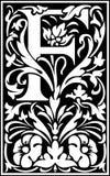 Rug en Wit van de bloemen het de decoratieve brief F Royalty-vrije Stock Foto