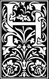 Rug en Wit van de bloemen het de decoratieve brief H Stock Foto's