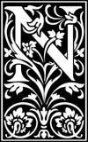 Rug en Wit van de bloemen het de decoratieve brief N Stock Afbeeldingen