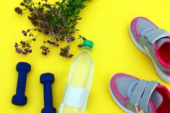 Rug yellow with dumbbells, a bottle of water and sneakers on the fresh green grass. In the open air Royalty Free Stock Photography