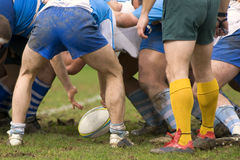 Rugby. Men playing rugby in on the grass Stock Images