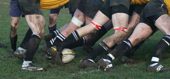 Rugby Images stock