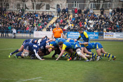 Rugby Obrazy Royalty Free