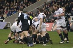 rugby Fotografia Royalty Free
