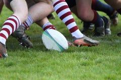rugby Lizenzfreie Stockfotos