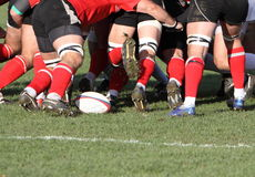 Rugby Stock Photos