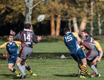 Rugby Action Royalty Free Stock Photo