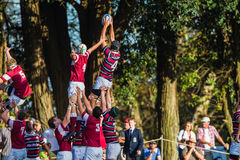 Rugby Action Line-out Jump Stock Images