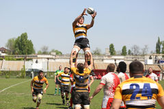 Rugby action - line out Stock Image