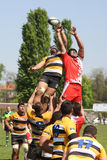 Rugby action - line out Stock Photos