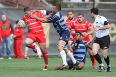 Rugby action. Rugby players fighting for ball during the match between Dinamo Bucharest and Farul Constanta in the Romanian Rugby National Championship Stock Image