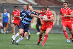 Rugby action. Rugby players fighting for ball during the match between Dinamo Bucharest and Farul Constanta in the Romanian Rugby National Championship Stock Photography