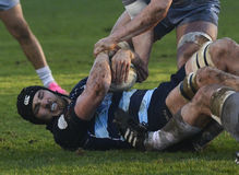 Rugby action Royalty Free Stock Photos