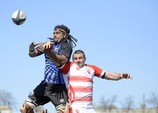 Rugby action Stock Photo