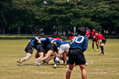 Rugby in action. Rugby players scrum in action with the back of player Royalty Free Stock Photos