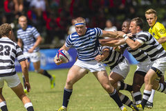 Rugby Action Schools Stock Photography