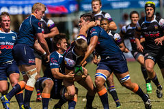 Players Challenge Ball Rugby Greys Outeniqua Royalty Free Stock Photos