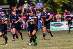 Player Ball Chase Rugby Greys Outeniqua Royalty Free Stock Photography