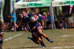 Player Ball Tackle Rugby Greys Outeniqua Stock Photos