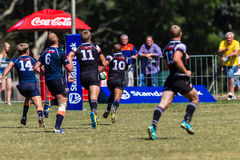 Player Ball Scoreline Rugby Greys Outeniqua Royalty Free Stock Photo