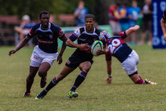 Player Flyhalf Rugby Outeniqua Stock Photos