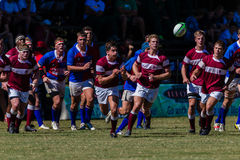 Player Ball Scrum Rugby Kearsney. Rugby action of 1st teams high school players of mature young men between Kearsney College and Framesby High School at the royalty free stock images