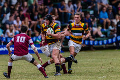 Player Forward Ball Carry Rugby Paarl Gymn Royalty Free Stock Image