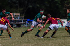 Players Forward Ball Rugby Glenwood Royalty Free Stock Photography