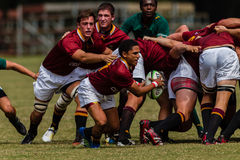 Players Ball Scrum-Half Rugby Paul Roos. Rugby action of 1st teams high school players of mature young men between Paul Roos Gymn and Glenwood Boys High School stock image