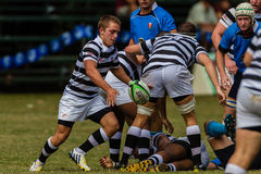 Player Scrum Half Rugby Selborne. Play moments of mature young men between Nico Malan High School and Selborne  College at the Kearsney easter rugby festival Stock Image