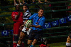 Player Rugby Pass Ball Wing Royalty Free Stock Photography