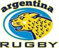 Rugby Argentina Jaguar Leopard Royalty Free Stock Image