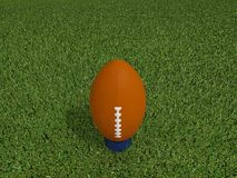 Rugby ball on a grass Royalty Free Stock Image